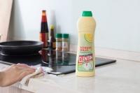 洁汀 擦洗用清洁乳液(清香柠檬味) 500ml 德国进口